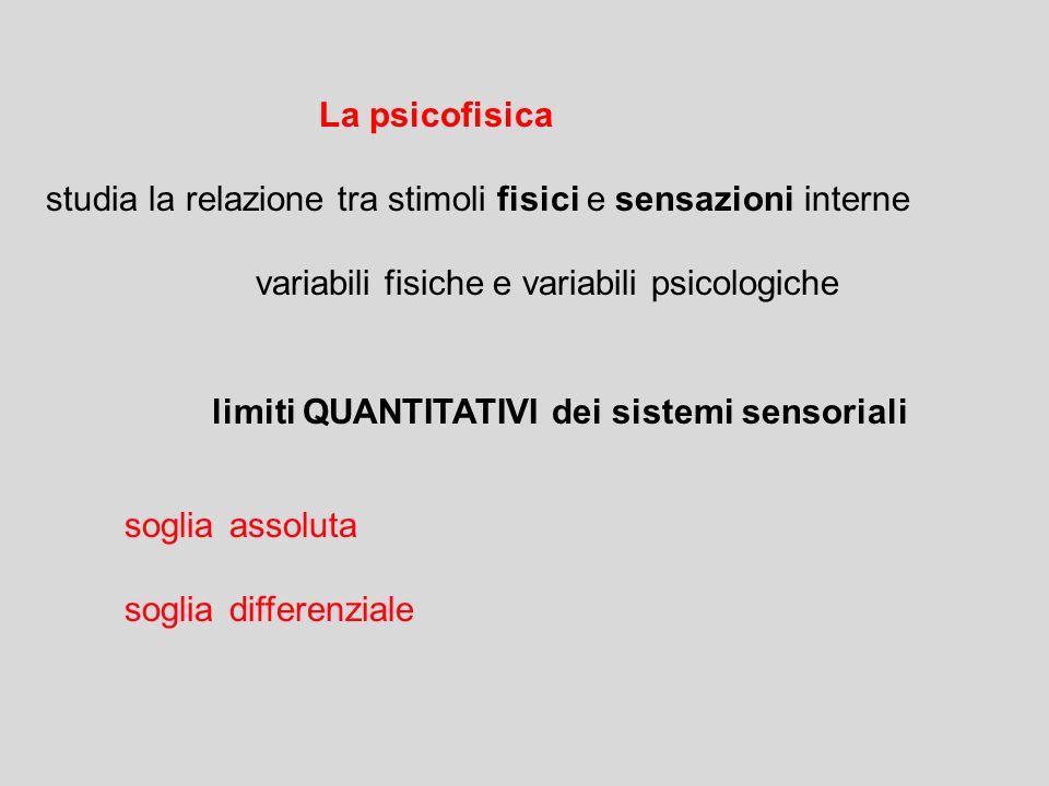La psicofisica studia la relazione tra stimoli fisici e sensazioni interne. variabili fisiche e variabili psicologiche.