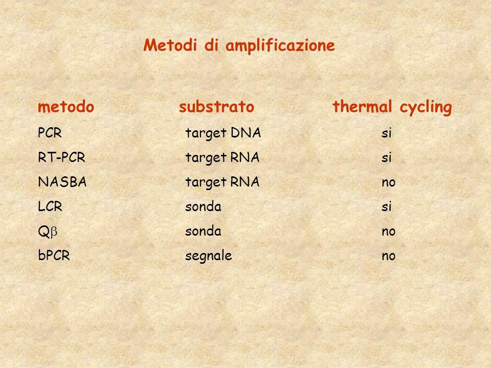 Metodi di amplificazione