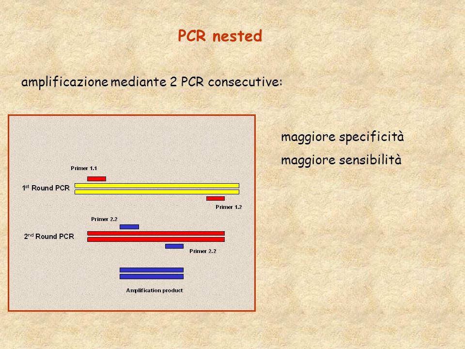PCR nested amplificazione mediante 2 PCR consecutive:
