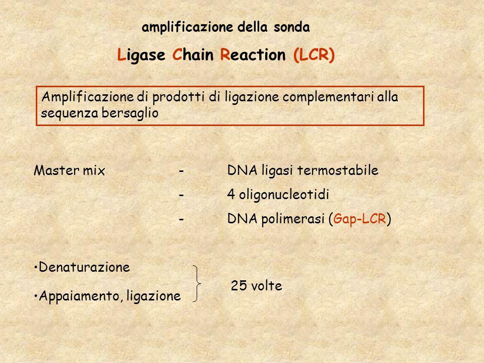 amplificazione della sonda Ligase Chain Reaction (LCR)