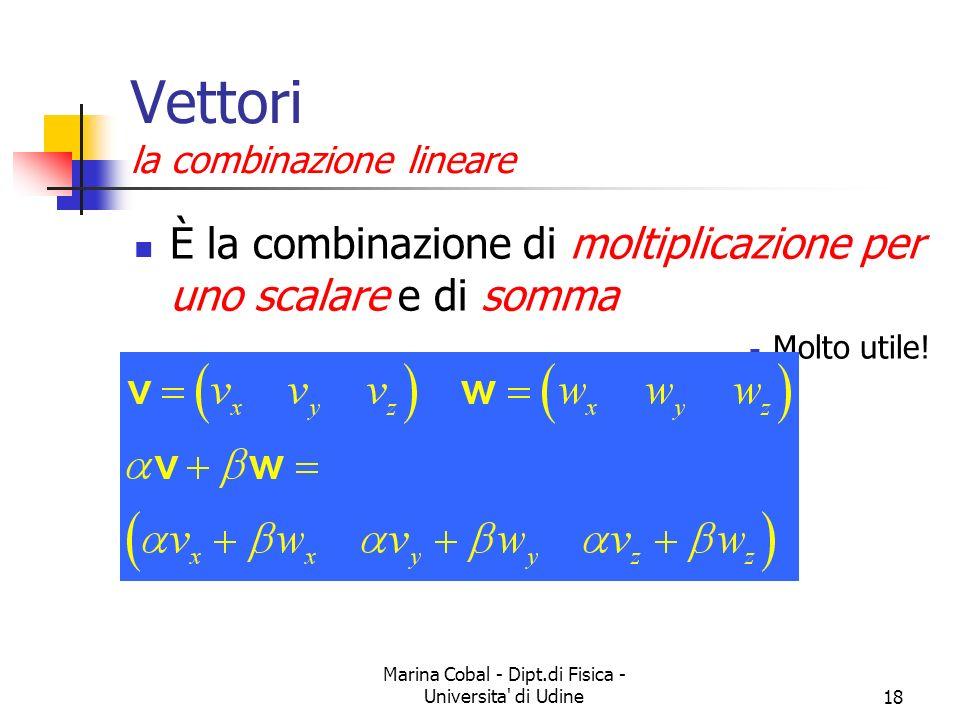 Vettori la combinazione lineare