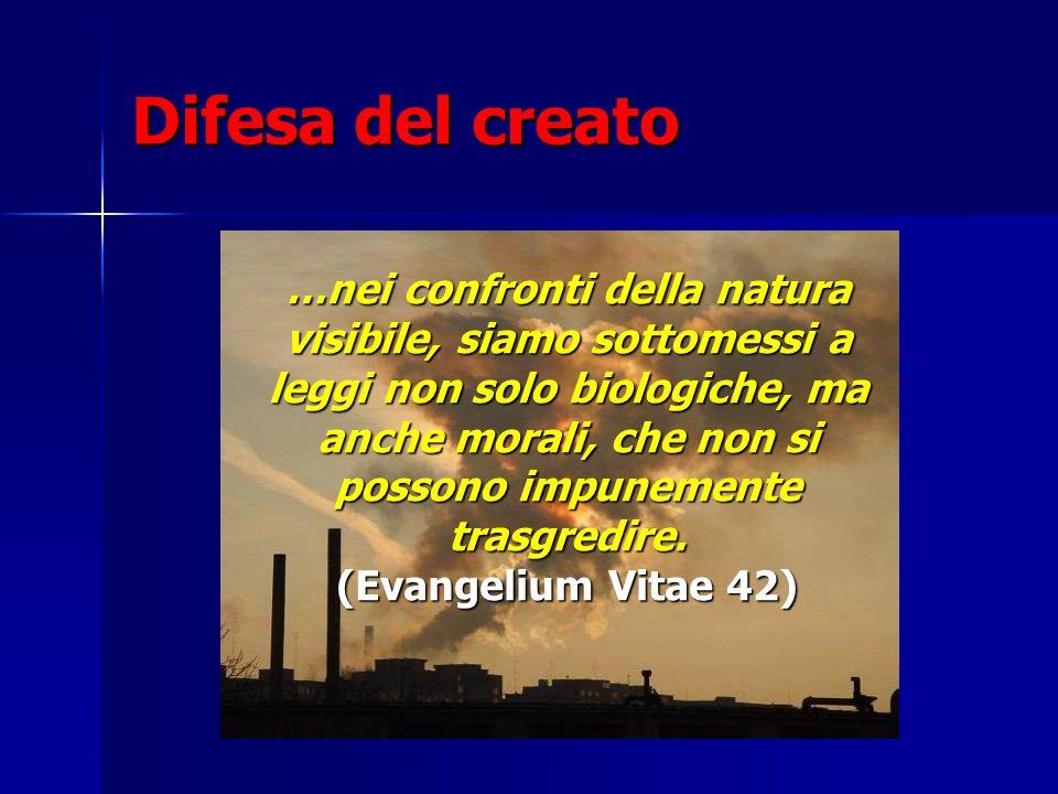 Difesa del creato
