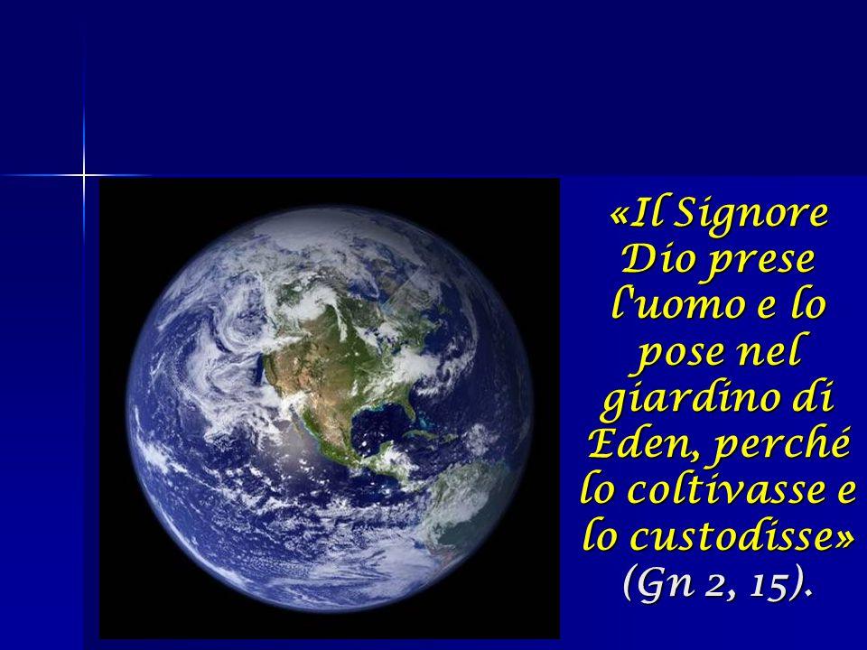 «Il Signore Dio prese l uomo e lo pose nel giardino di Eden, perché lo coltivasse e lo custodisse» (Gn 2, 15).