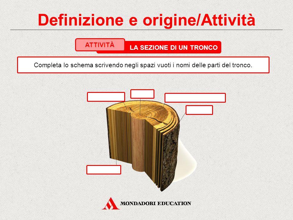 Definizione e origine/Attività