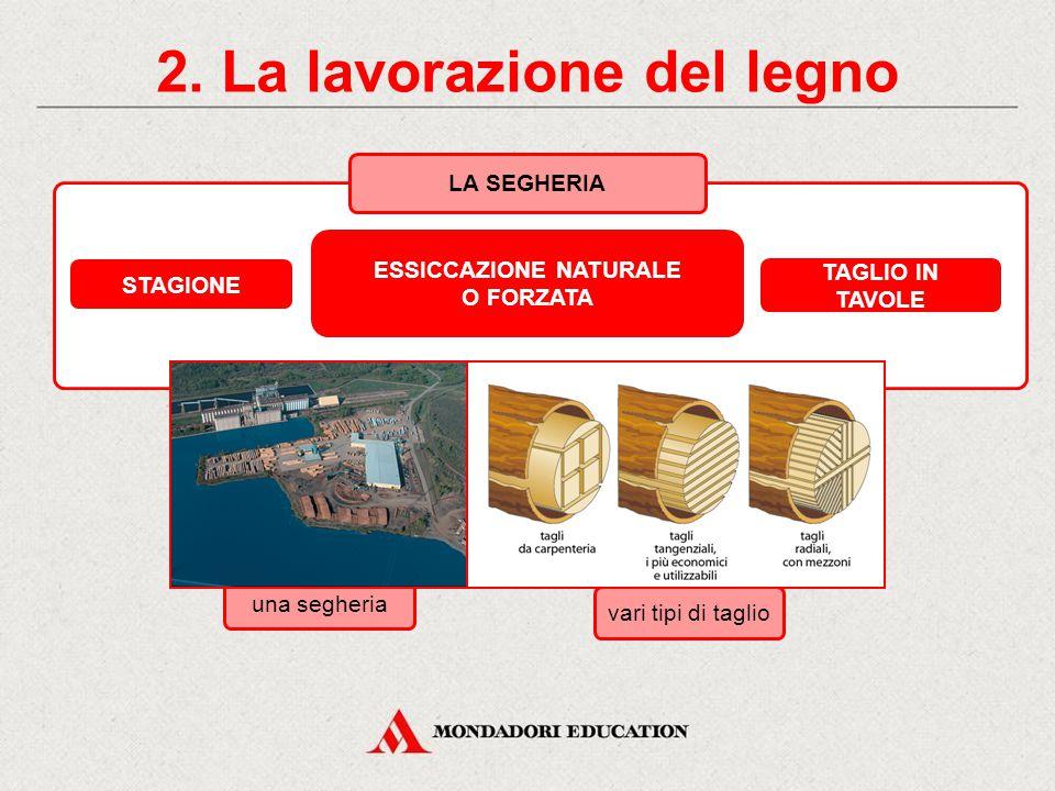 2. La lavorazione del legno ESSICCAZIONE NATURALE