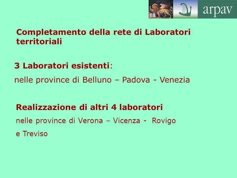 Completamento della rete di Laboratori territoriali