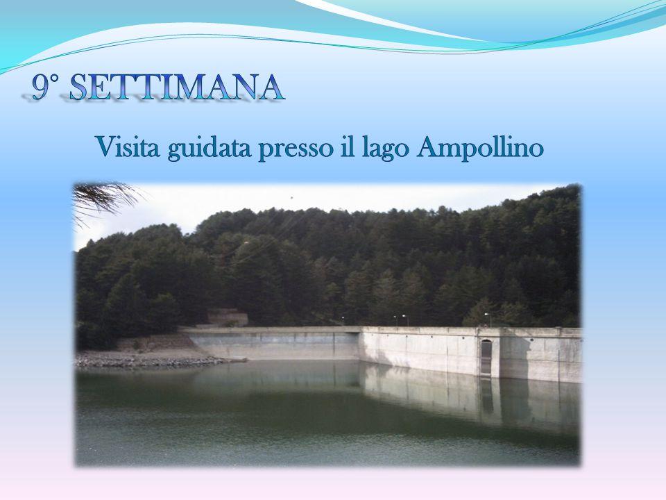9° SETTIMANA Visita guidata presso il lago Ampollino