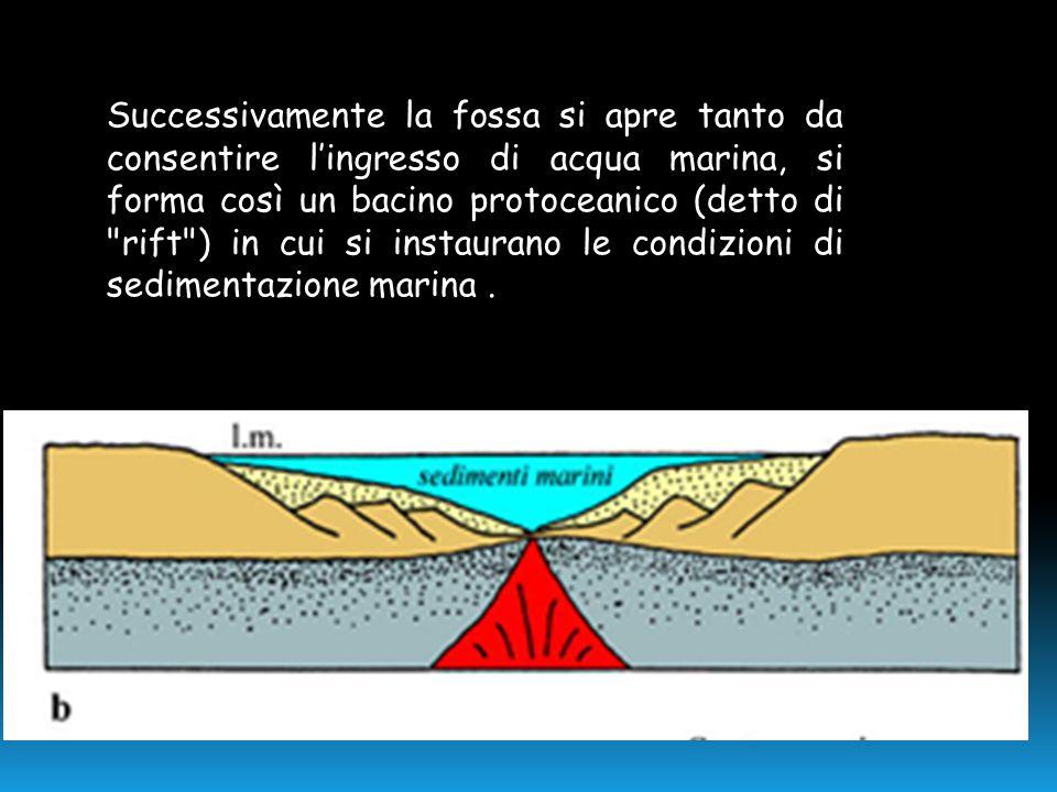 Successivamente la fossa si apre tanto da consentire l'ingresso di acqua marina, si forma così un bacino protoceanico (detto di rift ) in cui si instaurano le condizioni di sedimentazione marina .