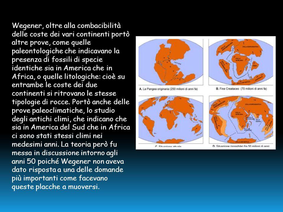 Wegener, oltre alla combacibilità delle coste dei vari continenti portò altre prove, come quelle paleontologiche che indicavano la presenza di fossili di specie identiche sia in America che in Africa, o quelle litologiche: cioè su entrambe le coste dei due continenti si ritrovano le stesse tipologie di rocce.