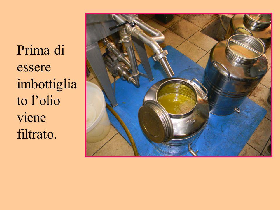 Prima di essere imbottigliato l'olio viene filtrato.