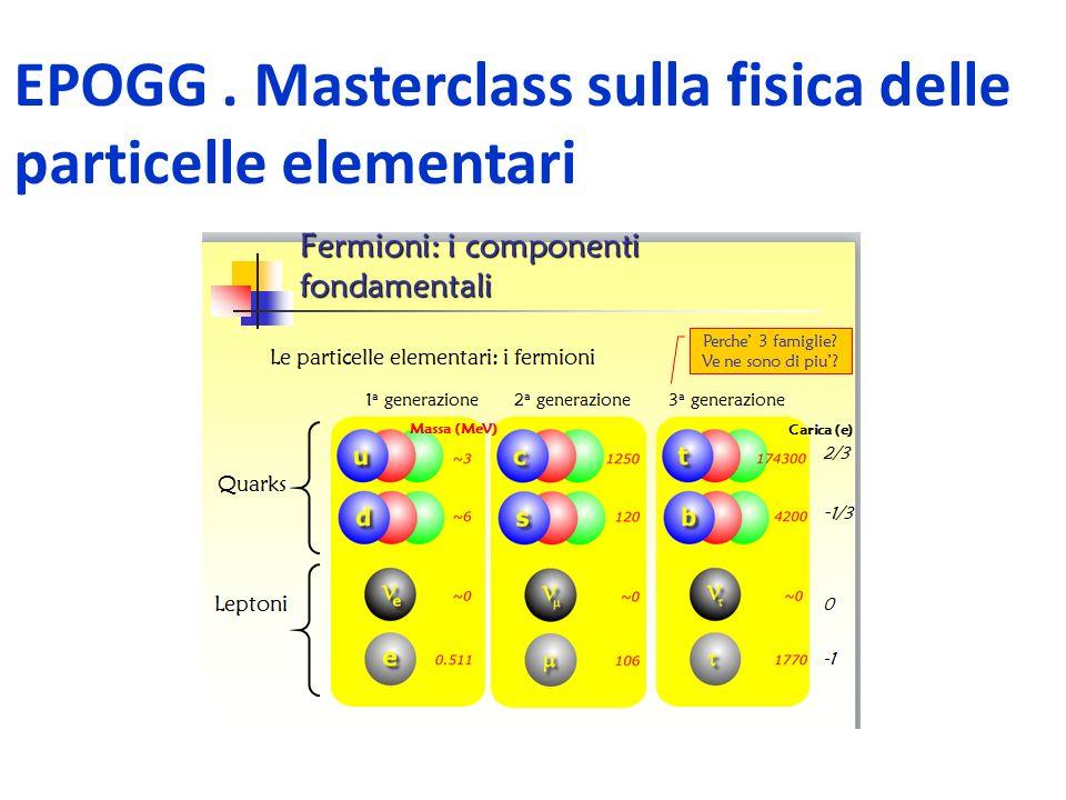 EPOGG . Masterclass sulla fisica delle particelle elementari