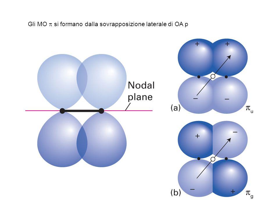 Gli MO p si formano dalla sovrapposizione laterale di OA p