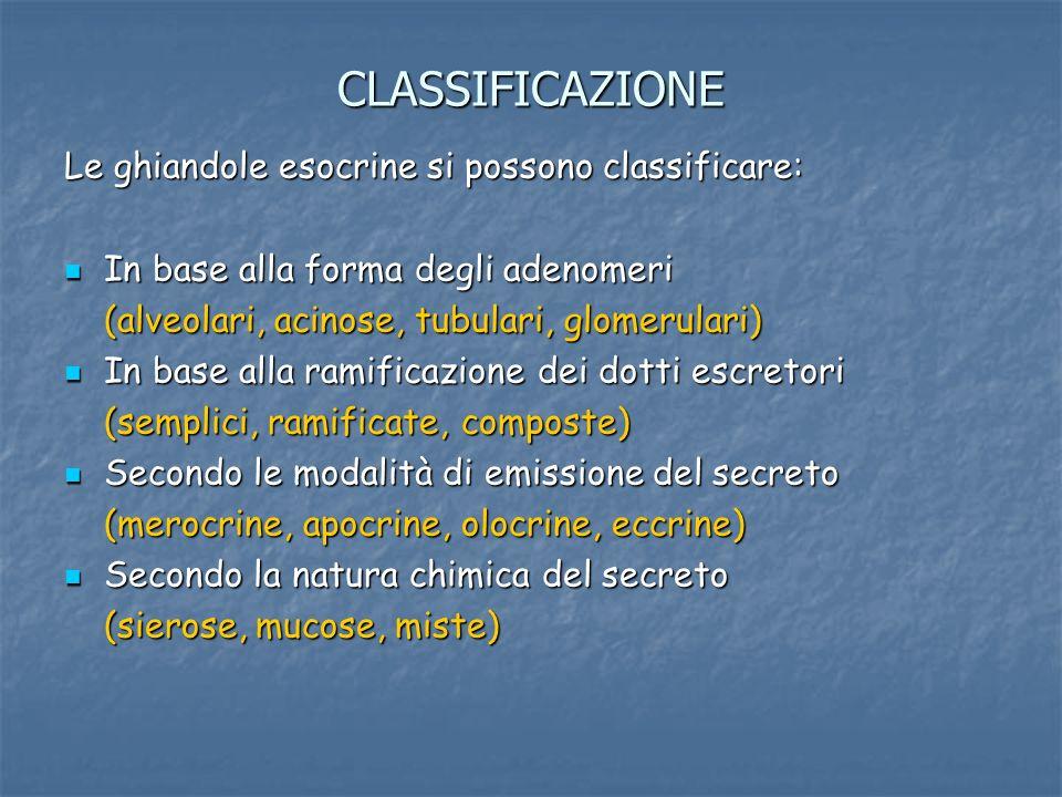 CLASSIFICAZIONE Le ghiandole esocrine si possono classificare: