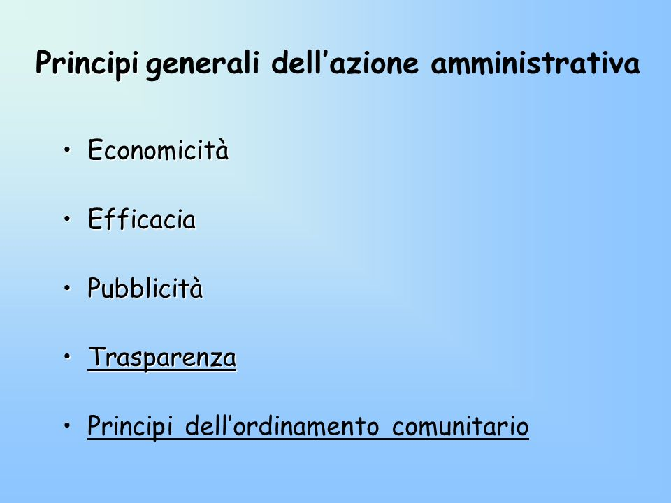 Principi generali dell'azione amministrativa