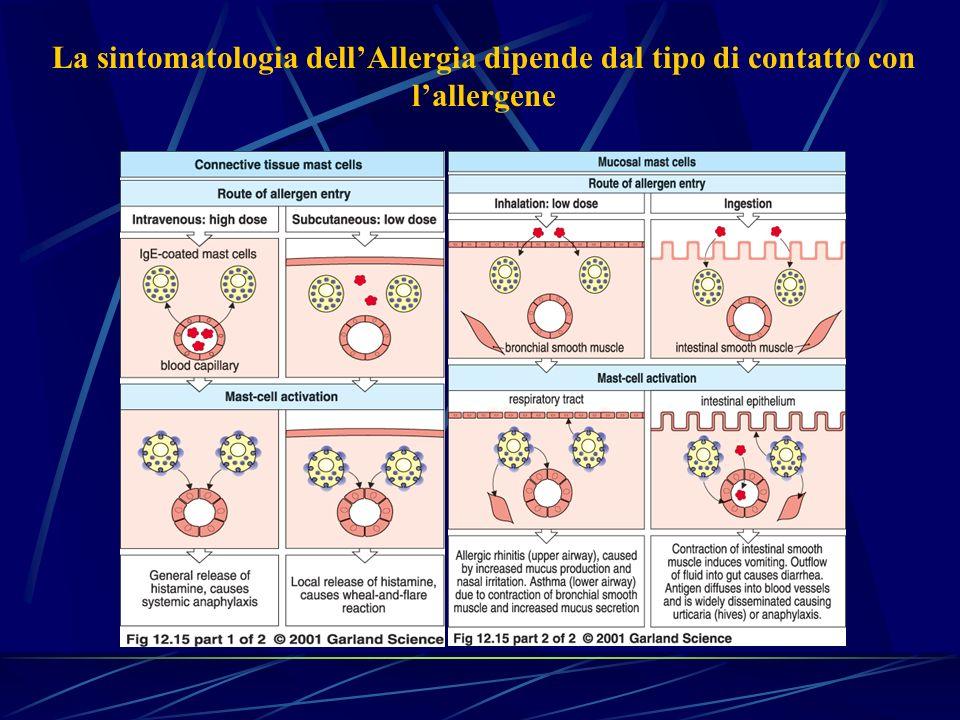 La sintomatologia dell'Allergia dipende dal tipo di contatto con l'allergene