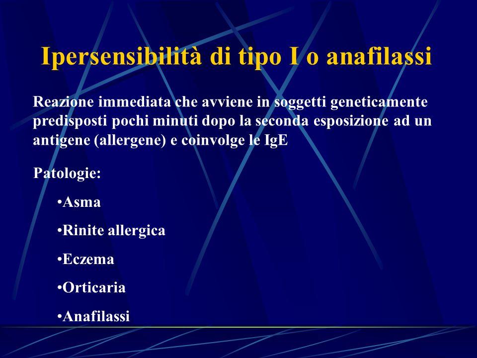 Ipersensibilità di tipo I o anafilassi