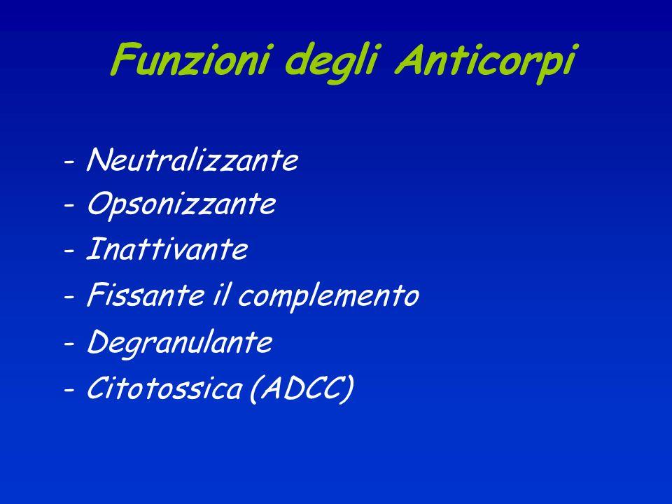 Funzioni degli Anticorpi