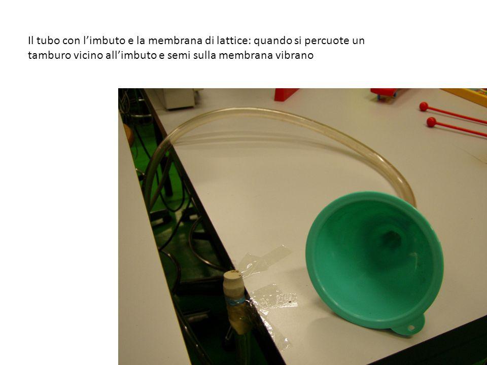 Il tubo con l'imbuto e la membrana di lattice: quando si percuote un tamburo vicino all'imbuto e semi sulla membrana vibrano