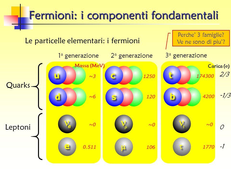Fermioni: i componenti fondamentali