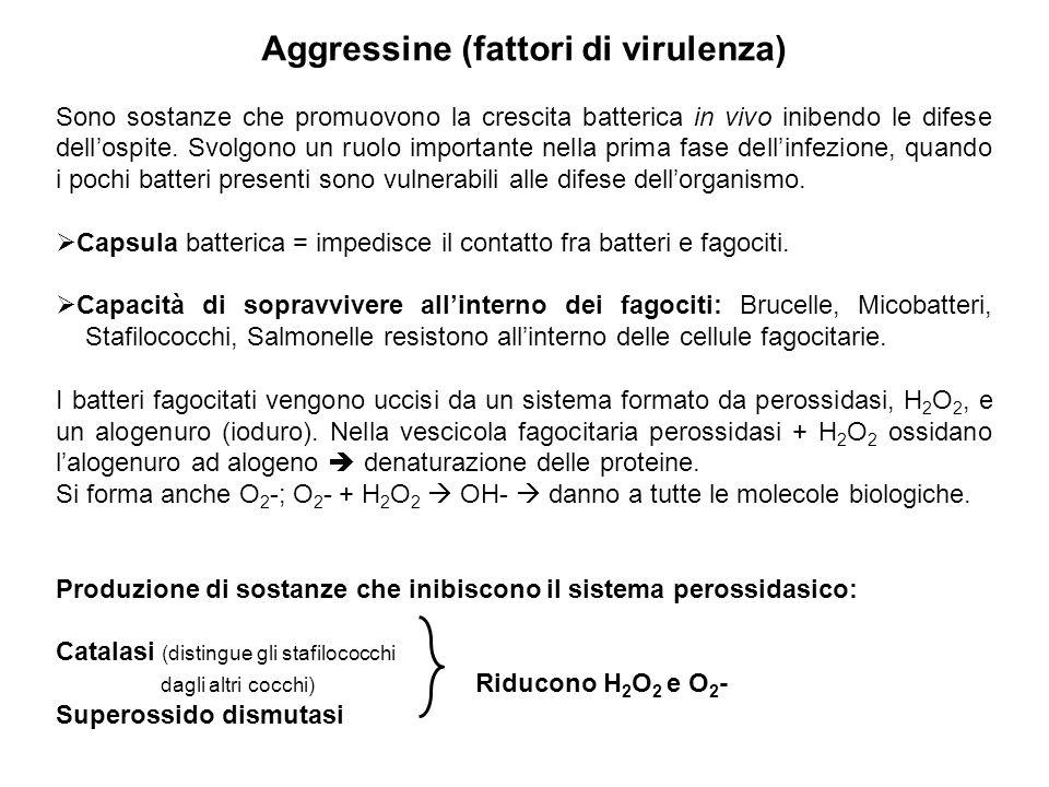 Aggressine (fattori di virulenza)