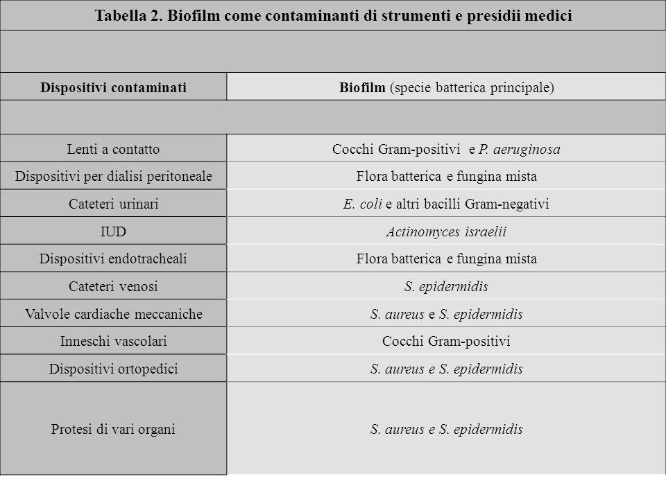 Tabella 2. Biofilm come contaminanti di strumenti e presidii medici