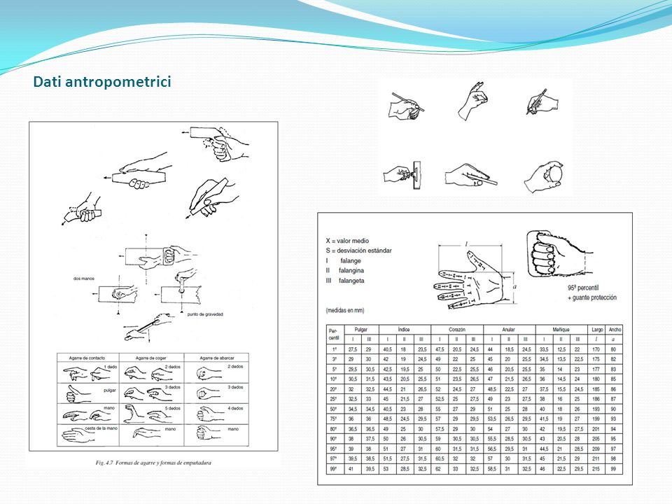 Dati antropometrici