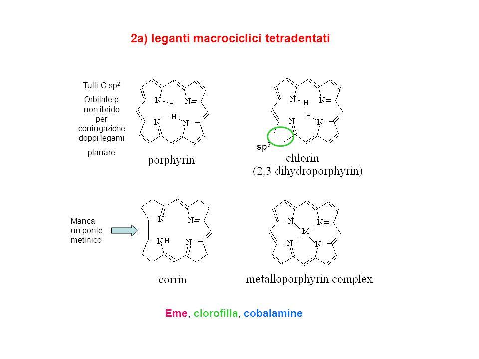 2a) leganti macrociclici tetradentati