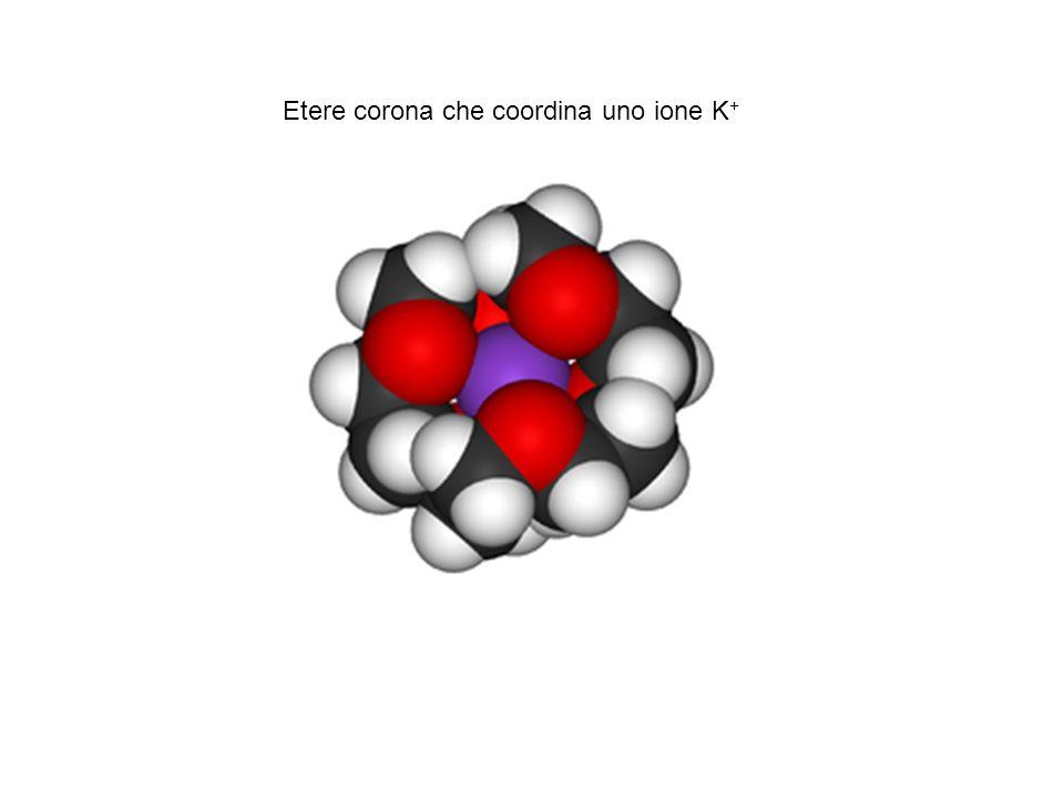 Etere corona che coordina uno ione K+