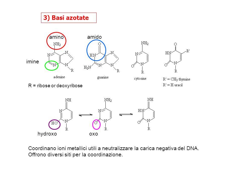 3) Basi azotate imine amino amido oxo hydroxo