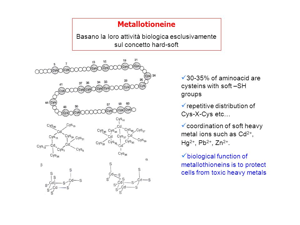 Metallotioneine Basano la loro attività biologica esclusivamente sul concetto hard-soft. 30-35% of aminoacid are cysteins with soft –SH groups.