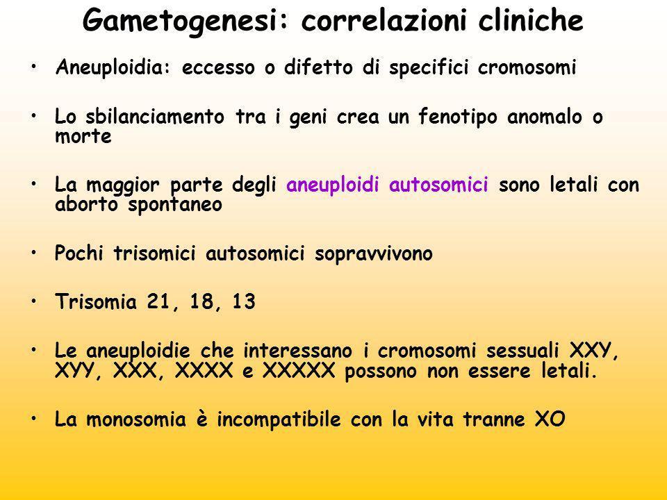 Gametogenesi: correlazioni cliniche