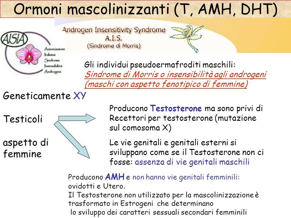 Ormoni mascolinizzanti (T, AMH, DHT)