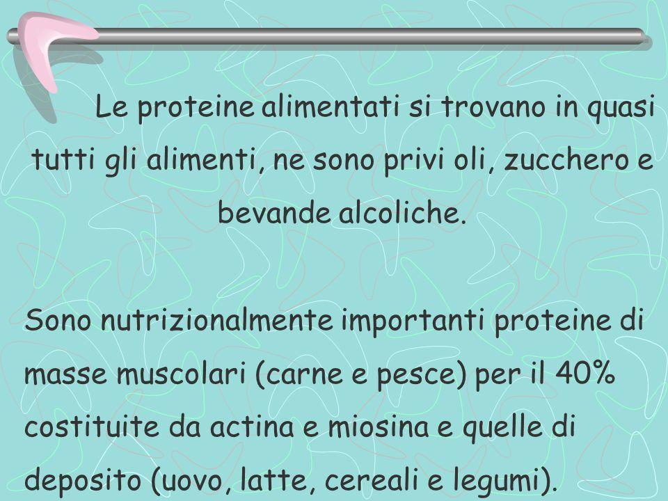 Le proteine alimentati si trovano in quasi tutti gli alimenti, ne sono privi oli, zucchero e bevande alcoliche.