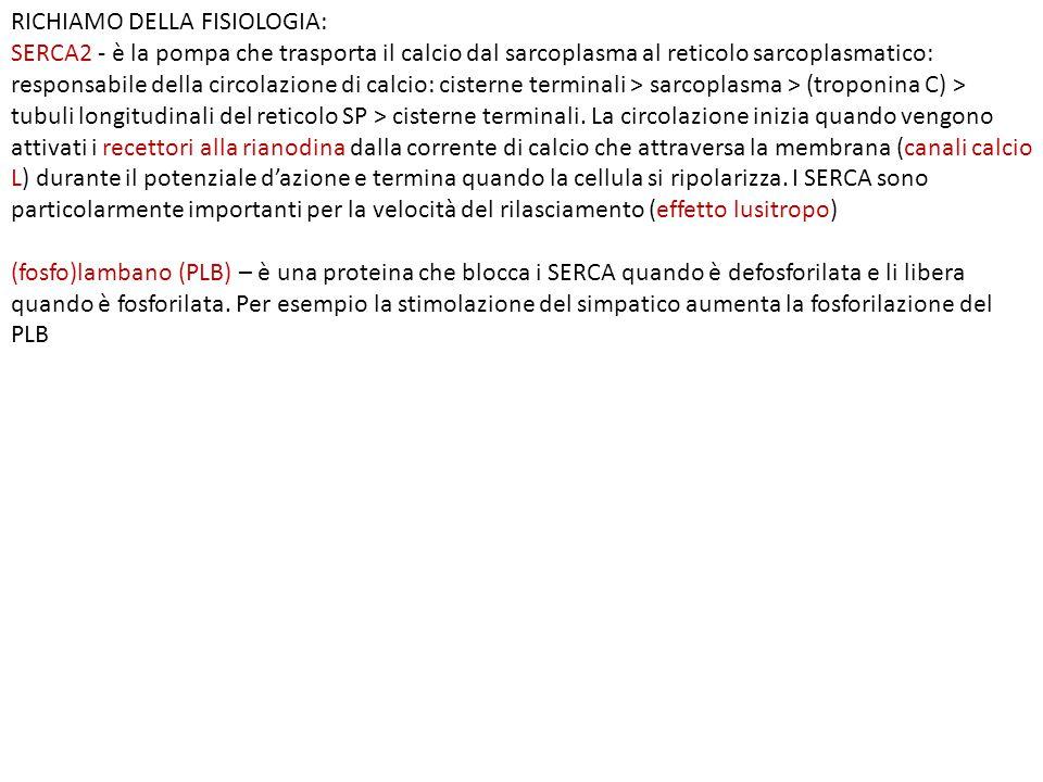 RICHIAMO DELLA FISIOLOGIA: