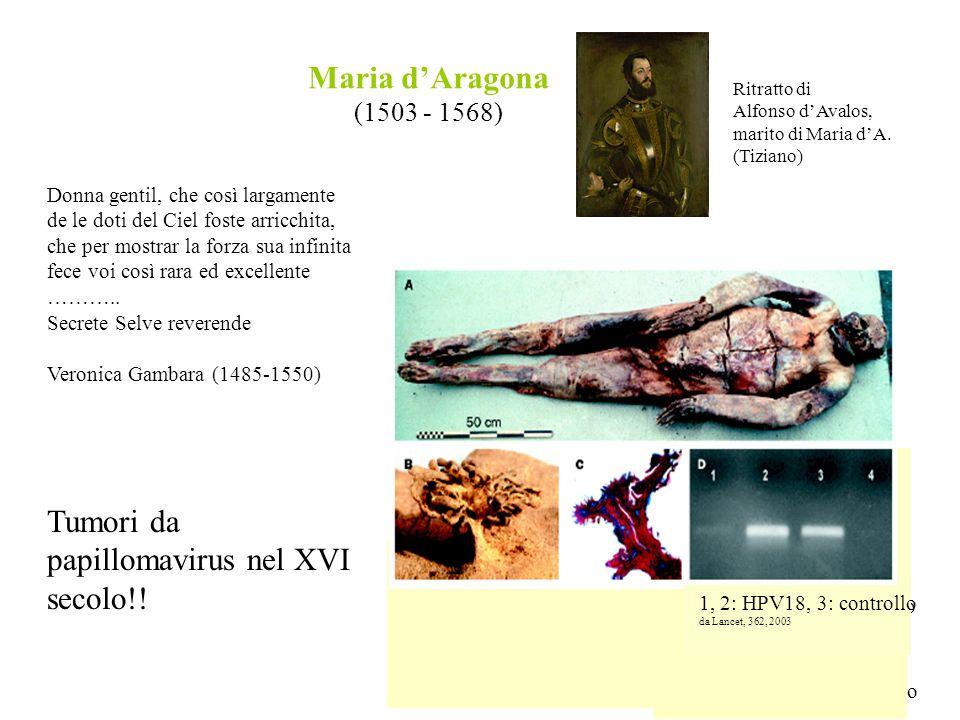 Tumori da papillomavirus nel XVI secolo!!
