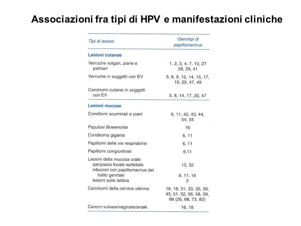 Associazioni fra tipi di HPV e manifestazioni cliniche