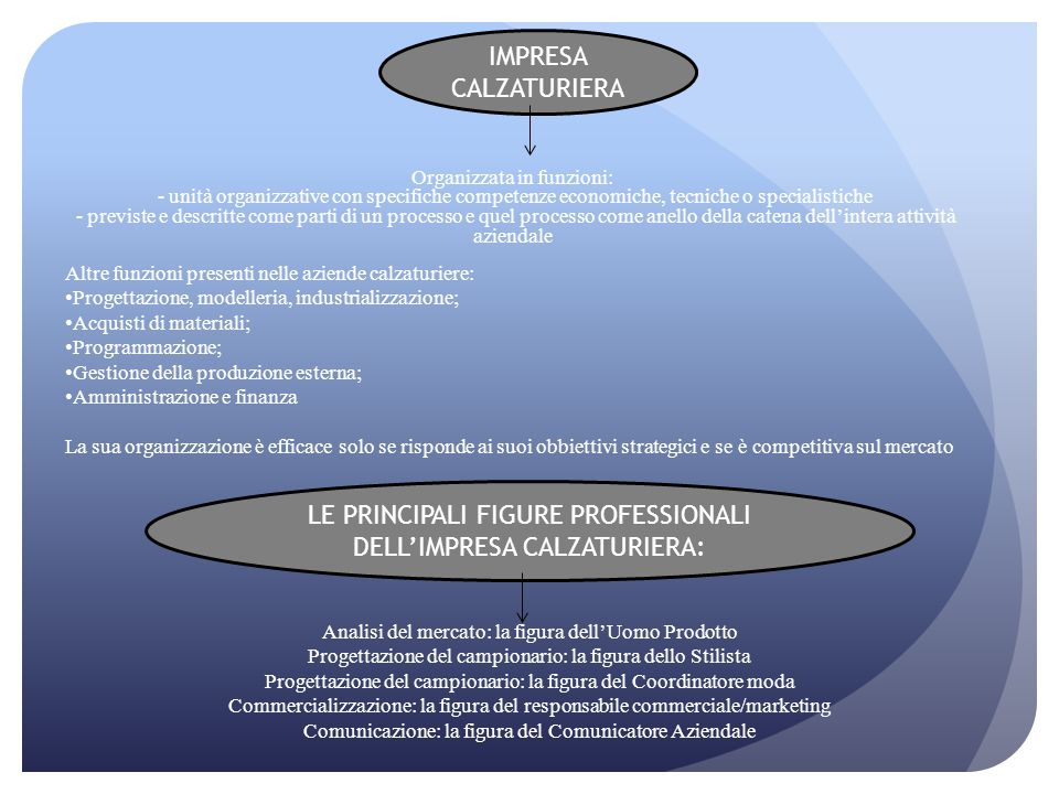LE PRINCIPALI FIGURE PROFESSIONALI DELL'IMPRESA CALZATURIERA: