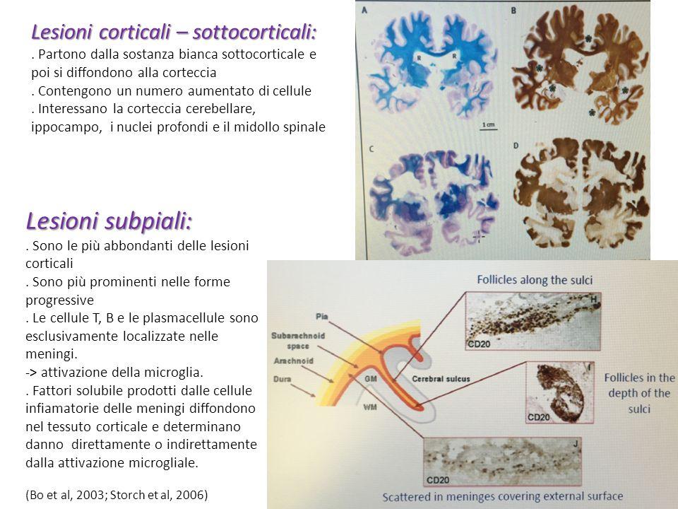 Lesioni subpiali: Lesioni corticali – sottocorticali: