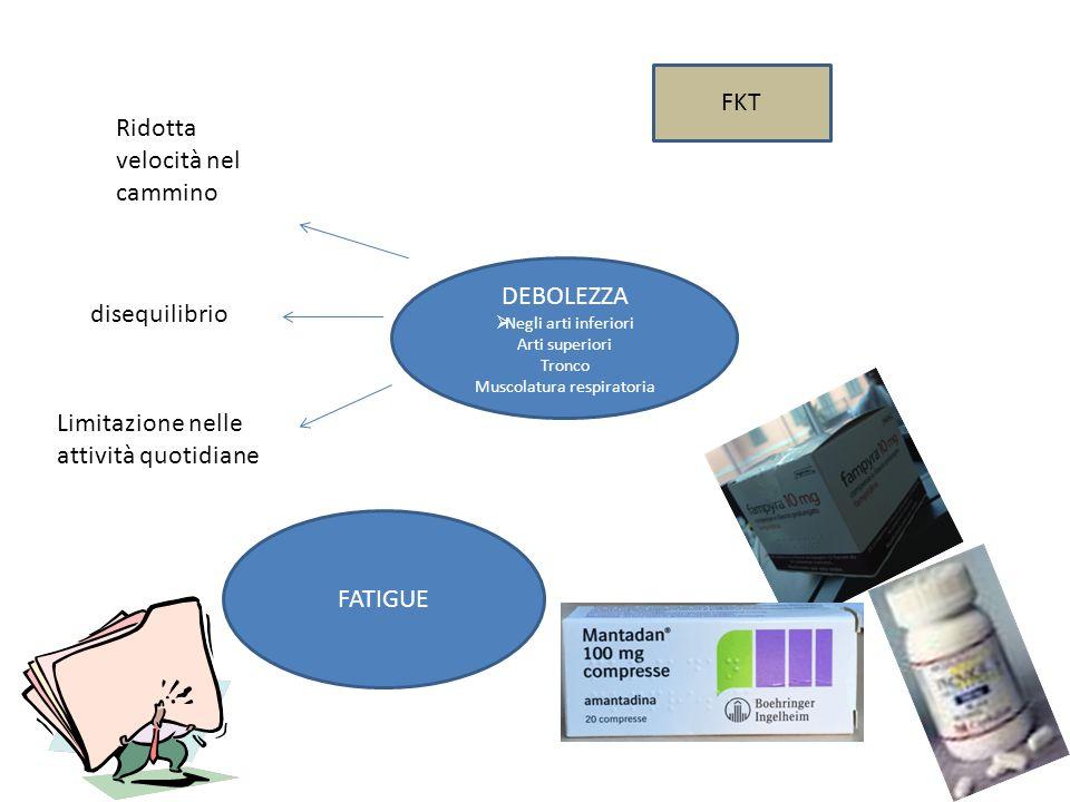 Muscolatura respiratoria