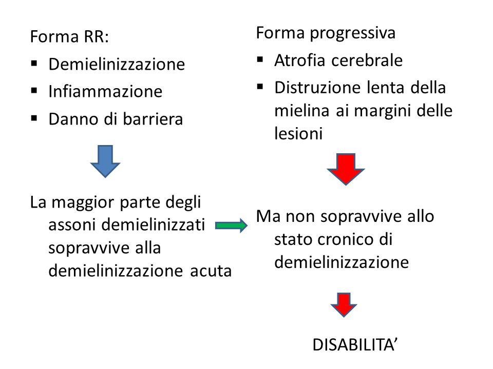 Forma progressiva Atrofia cerebrale. Distruzione lenta della mielina ai margini delle lesioni.