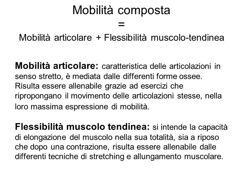 Mobilità composta = Mobilità articolare + Flessibilità muscolo-tendinea