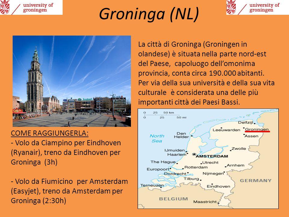 Groninga (NL)