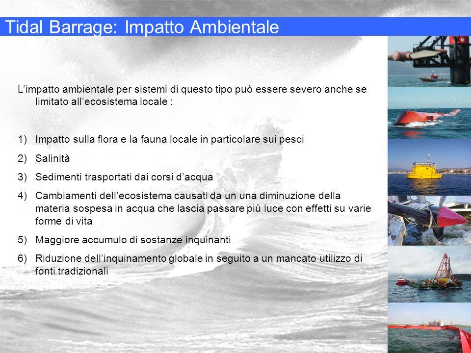 Tidal Barrage: Impatto Ambientale
