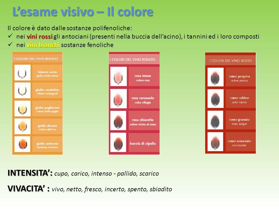 L'esame visivo – Il colore