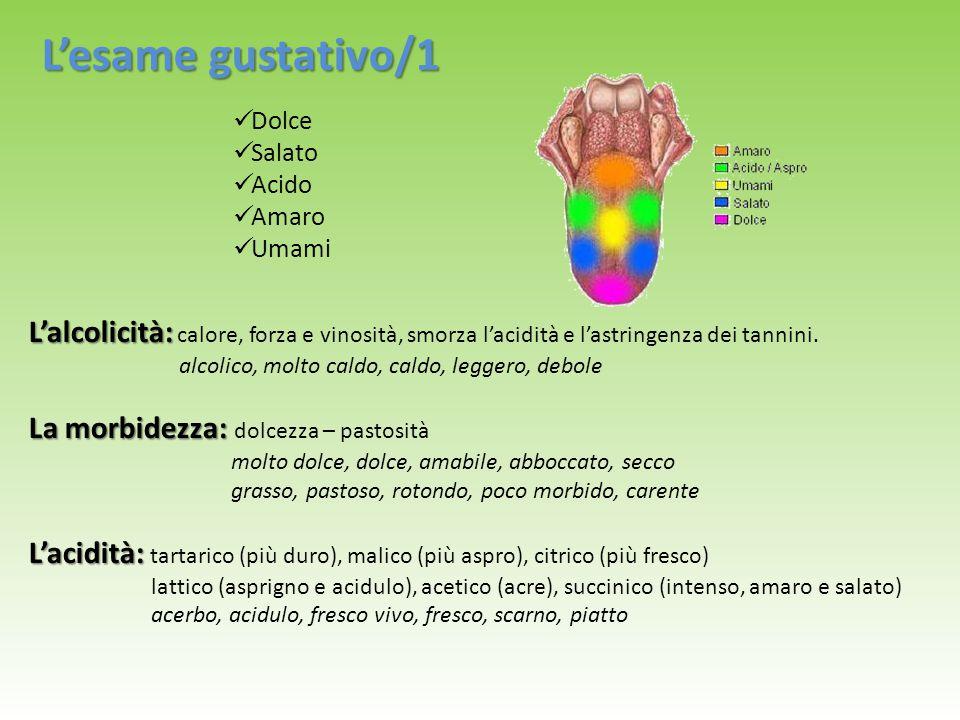 L'esame gustativo/1 Dolce. Salato. Acido. Amaro. Umami. L'alcolicità: calore, forza e vinosità, smorza l'acidità e l'astringenza dei tannini.