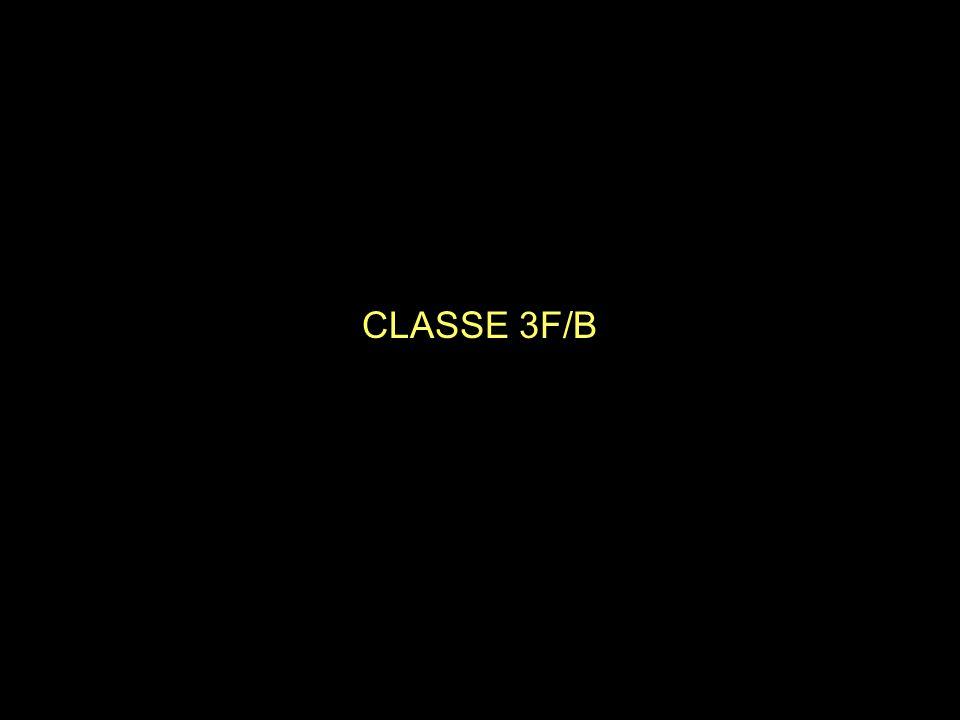 CLASSE 3F/B