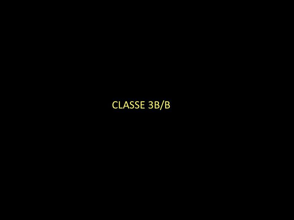 CLASSE 3B/B