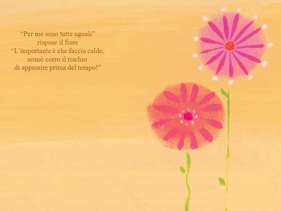 Per me sono tutte uguali rispose il fiore