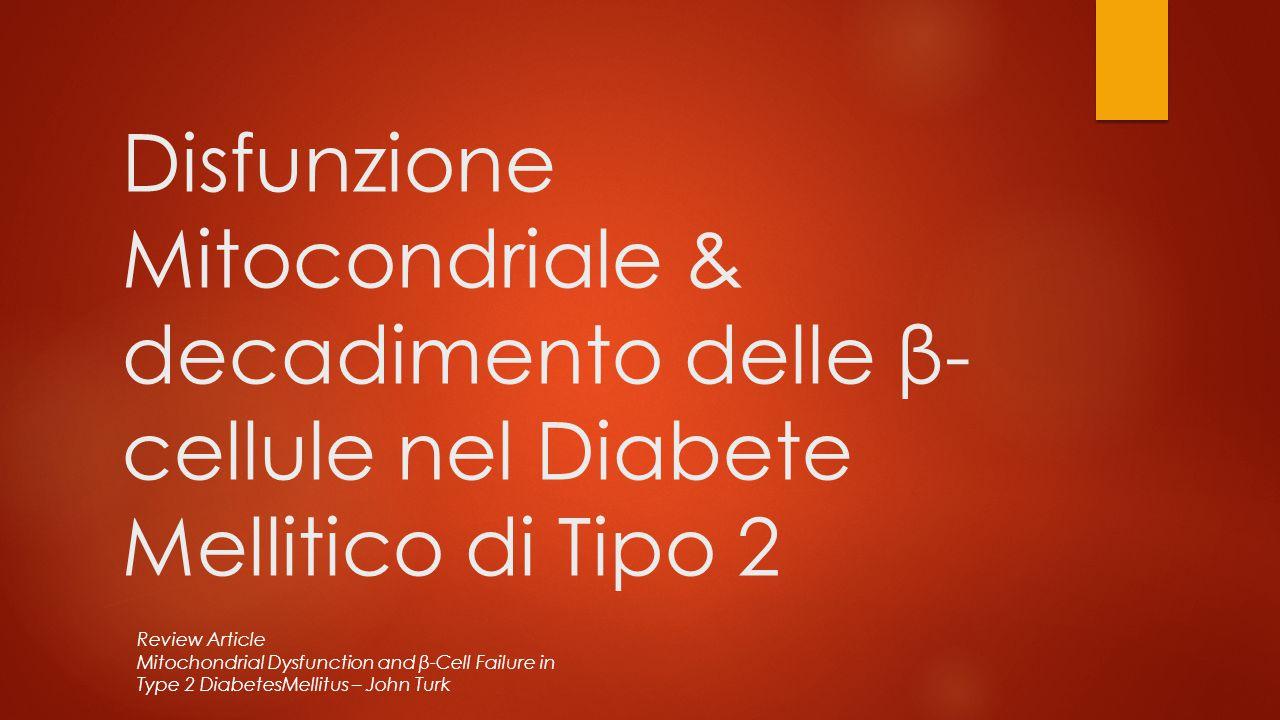 Disfunzione Mitocondriale & decadimento delle β-cellule nel Diabete Mellitico di Tipo 2