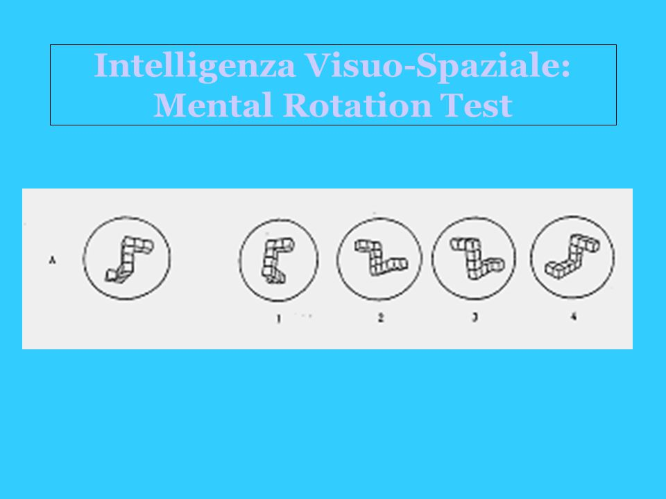 Intelligenza Visuo-Spaziale: Mental Rotation Test